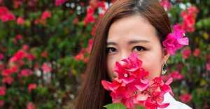 如何使花卉植株小型化、紧凑化?