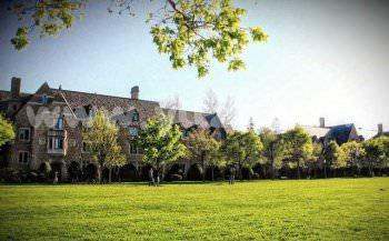 学校的校园草坪如何应用搭配建设?