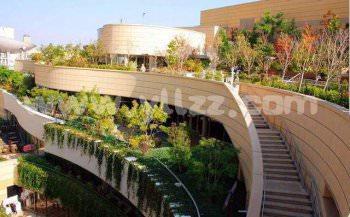 城镇如何生态绿化建设?