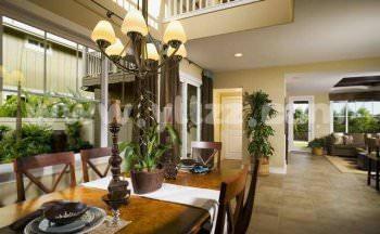 客厅客厅的花卉植物装饰宜简朴、美观?