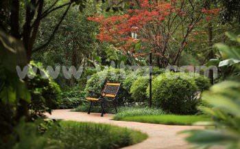 居住小区生态景观绿化如何配置观赏植物?