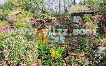 苏州园林花卉植物的文化内涵