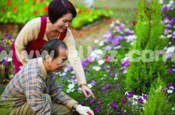 家庭养花如何调节光照?